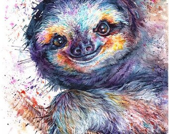 sloth: framed prints (size 12x17cms or 17x22cms)