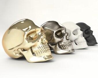Realistic Human Skull (40mm H)