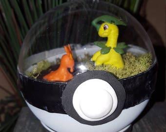 Bayleef and Slugma Pokémon Battle Terrarium