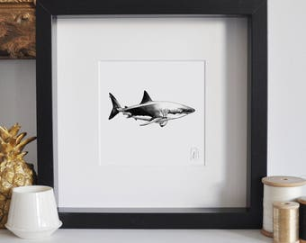 Framed Shark Print