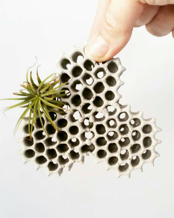 Hanging Planter/Concrete Planter/Housewarming Gift/House Planter/Indoor Planter/Plant Hanger/honeycomb/Hanging Air Planter
