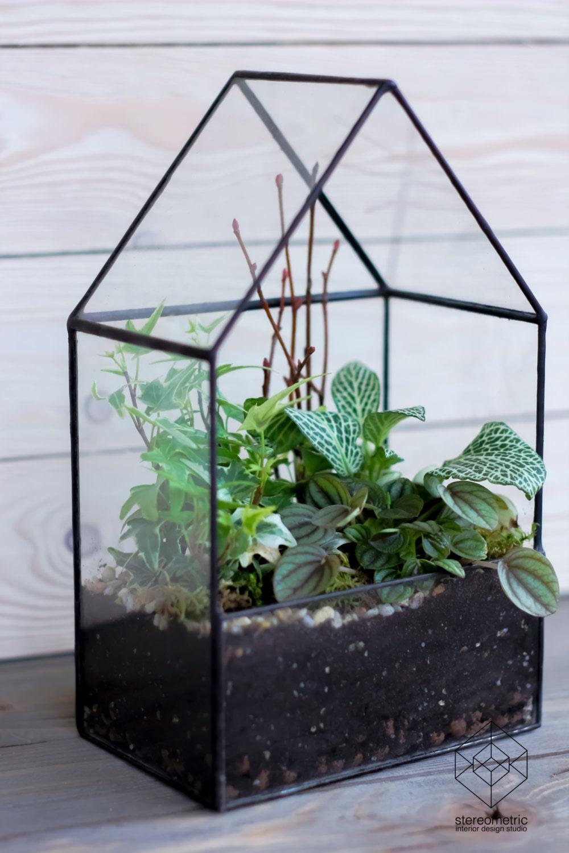 Grote glazen huis planter/handgemaakte glazen succulente image 0