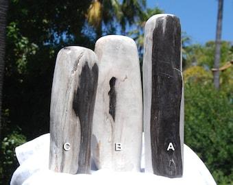 Petrified Wood Home Decor | Fossil Wood | Petrified Wood Slice | Petrified Wood Slab | Boho Home Decor | Petrified Wood for Sale