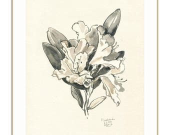 Floral PRINT - black and white watercolour after Rhododendron blossom - botanical drawing monochrome ink - floral wall art by Catalina