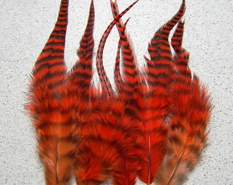 ORANGE GRIZZLY Feathers 3 to 5 Inches Long