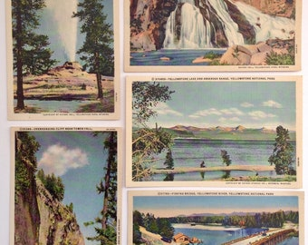 Yellowstone National Park, vintage postcards, lot of five, Kitsch, post card, Yellowstone Park, Castle Geyser, Fishing Bridge,