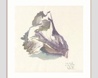Purple Kale watercolour - ORIGINAL watercolour painting after purple kale - vegetable art - original veggie art by Catalina