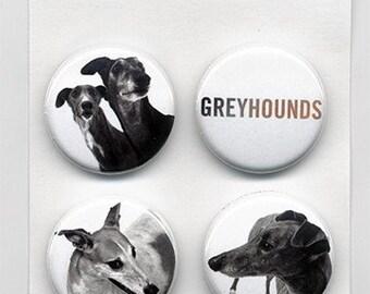 greyhound photographs 4 piece 1 inch pinback button set