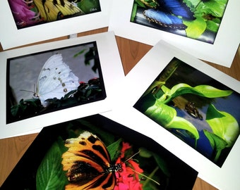 Quiet Moments~ Set of 5 Note Cards