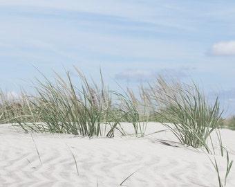 Sand Dunes Photo with Beach Grass, Coastal Wall Art, Beach Art, Blue and Green Color Palette, Seashore Decor, Coastal Decor Color Scheme