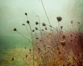 Fog Photograph - Mint Green - Green - Aqua Blue - Nature Photography - Cottage Wall Art - Dreamy - Pastel - Field - Autumn Decor - Flowers