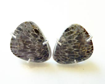 Little Wing Post Earrings, Rare Black Fossil Coral, Triangle, Prong-Set Sterling Silver Studs, Healing Energy Stones, Bird Feathers, OOAK