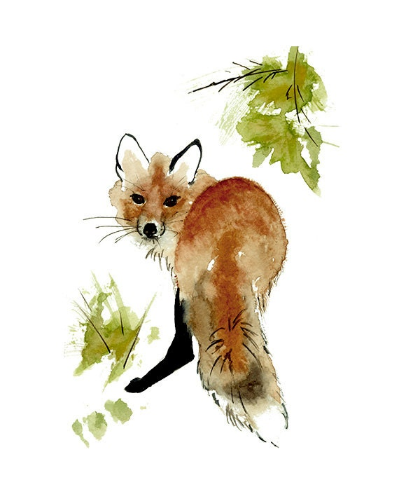 Red Fox Print from Original Watercolor Painting Red Fox