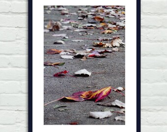 Autumn leaves photography, fall foliage art vertical wall art, maple tree fallen leaves, purple grey office wall art foyer decor photo print