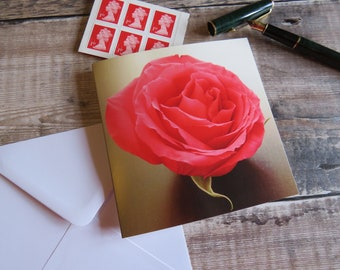 Pink Rose 'Tranquility' Greeting Card Left Blank for Personal Message