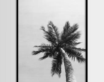 Palm tree, Tropical plant, Beach art, Modern art, Wall decor, Digital art, Printable, Digital art Instant Download 8x10, 11x14, 16x20