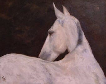Kings Ransom - Andalusian Horse 8x10 Canvas Giclee of Original Oil Painting by Kathleen Farmer Denver Artist