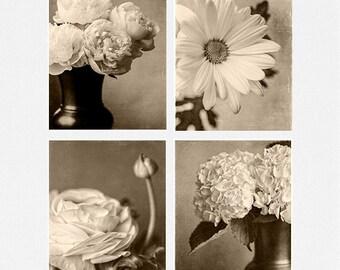 Sepia Prints or Canvas Set, Sepia Art, Sepia Decor, Sepia Flower Pictures, Ranunculus, Daisy, Hydrangea, Peonies, Dark Sepia Pictures.