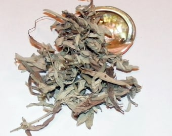 Herbs and Red Abalone Shell - Smudge