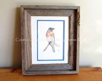 "Bluebird - Original Watercolor Songbird Painting with Barn Wood Frame, Double Matted, 10 3/4"" x 12 3/4"""
