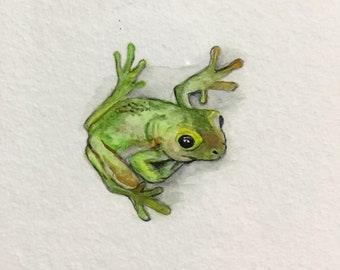 Green tree frog A5 print