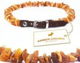 Amber Collars for pets from ticks and fleas