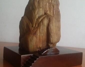 suiseki-viewing stone-stone crafts-Da Hua stone