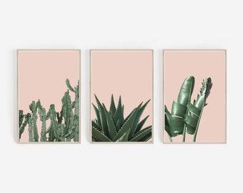 Set of 3 Prints,Tropical Prints,Banana Leaf Print,Succulent Print,Cactus Print,Blush Pink,Tropical Wall Art,Set of 3 Wall Art,Set of Prints