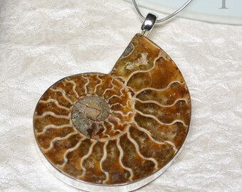 Ammonite Sterling Silver Extra Large  Pendant