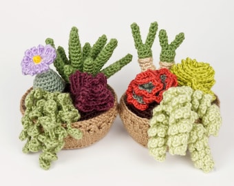 PDF Succulent Collections 3 and 4, eight realistic potted plant CROCHET PATTERNS