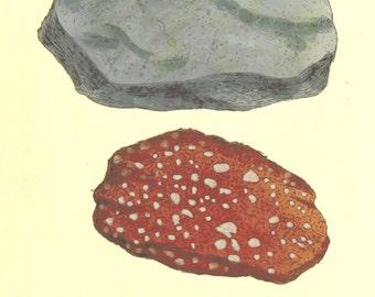 Vintage Mineralogy Illustration Digital Paper: Copper and Iron