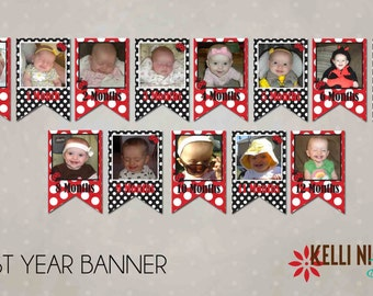 Ladybug First Birthday Photo Banner, Girl's 1st Birthday Decoration, Custom Printable Digital File #B111