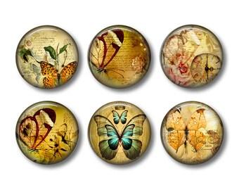 Butterfly pinback button badges or fridge magnets, fridge magnet set