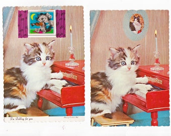 2 Kitten Vintage Postcards - Bizarre Differences