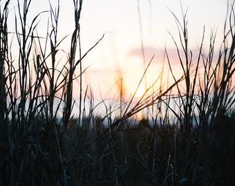 Sunrise Photography, Sunrise Print, Gallery Wall Photography, Sunrise on Beach Photography, Sky Photography, Morning Photography