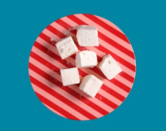 Classic Vanilla Bean Marshmallows - 1 dozen Gourmet homemade marshmallows