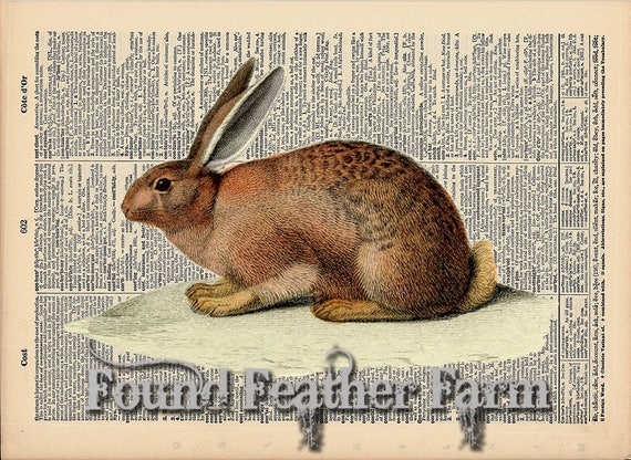 "Vintage Antique Dictionary Page with Antique Print ""English Rabbit Horizontal"""