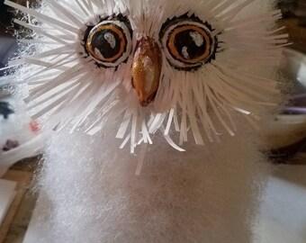 Fuzzy baby owl