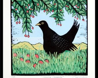 linocut, Blackbird, cherries, cherry tree, bird print, landscape art, green, red, black, printmaking,