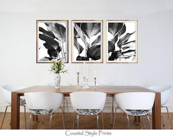 Set Of 3 Prints, Black and White Prints, Banana Leaves Print, Designer Wall Art, Tropical Print, Botanical Art, Posters, Prints, Palm Leaves