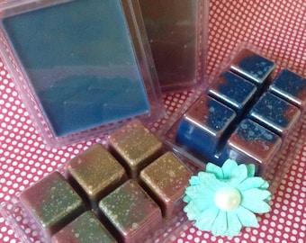 Mini Oil Burner & OzSoy Melts-Handmade-Scented-Aussie Wax-Made In Australia.