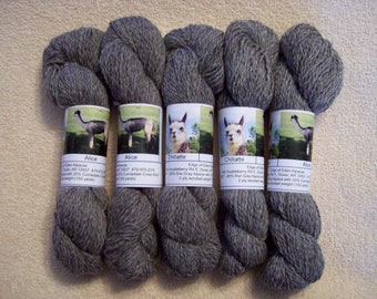 Alpaca Yarn – Chillatte and Alice (2 ply worsted weight)