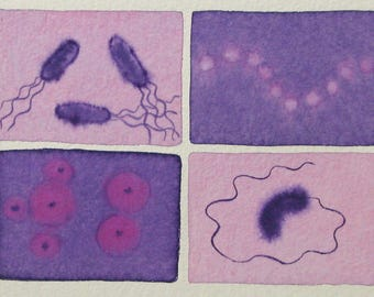 Pink and Purple  Microbes - original watercolor painting of bacteria