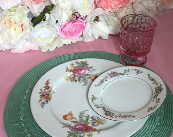Set of dinner plate and salad plate vintage