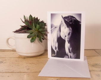 Handmade Cards - Black and White abstract horse