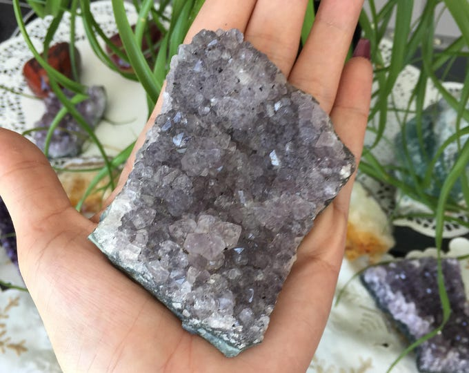 Amethyst Crystal / Large  Amethyst Cluster / Amethyst Geode w/ Reiki / Home Decor / Healing Crystals and Stones