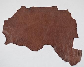Brown Lambskin Coupon