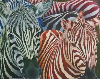 COLOR CODED - Zebras in Multi-Colors Giclee' Mini Print