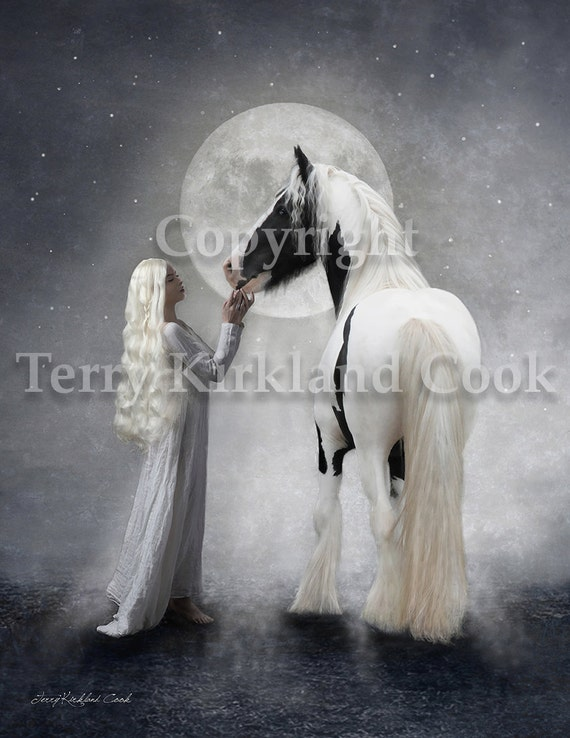 Dreams of White ~ Copyrighted Photograph by Terry Kirkland Cook