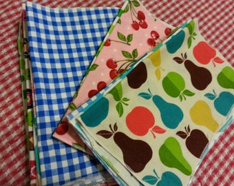 Everyday Cloth Napkins Set of 12  - Family Friendly Prints -